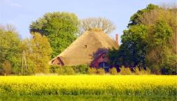 Nordfriesland- Naturerlebnis NORDSEE